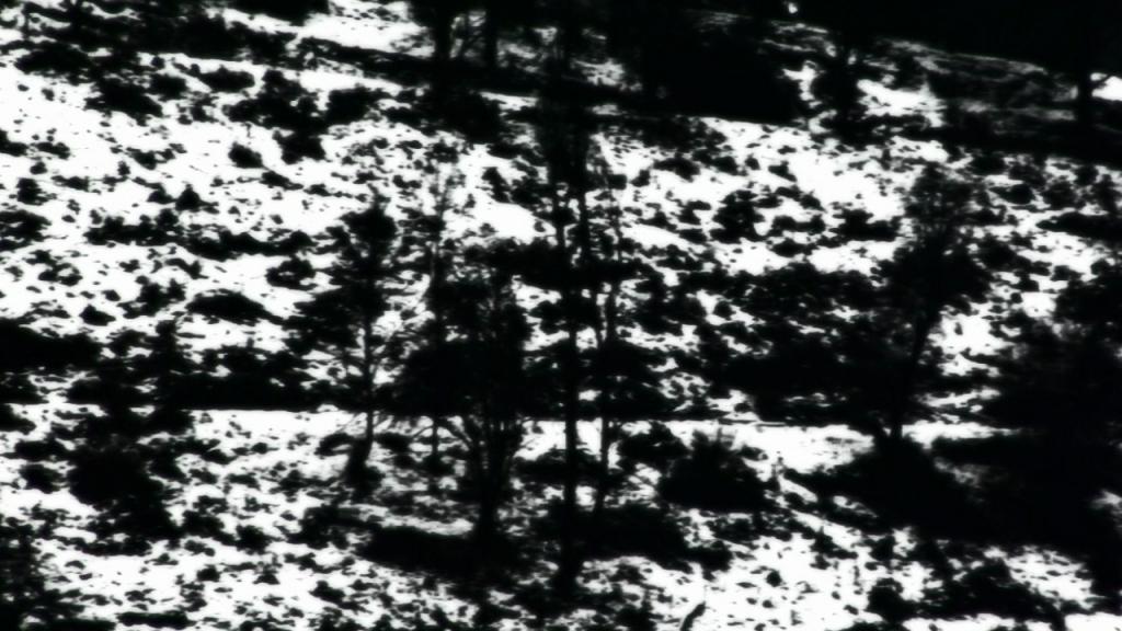 vlcsnap-2015-03-30-00h37m55s157